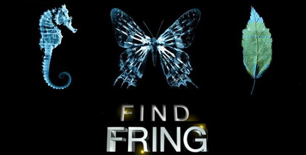 fringe_fring