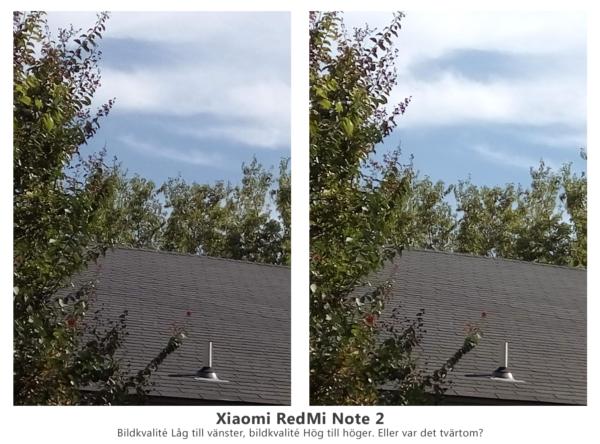 Bildjämförelse. Båda bilderna i skala 1:1, tagna med samma kamera, samma minut, men med ena bilden tagen med låg kvalité och den andra med hög. Ser du en betydande skillnad som motiverar en tre gånger större filstorlek?